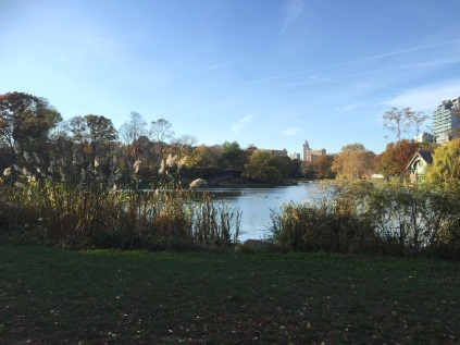 Central Park November 2015 1